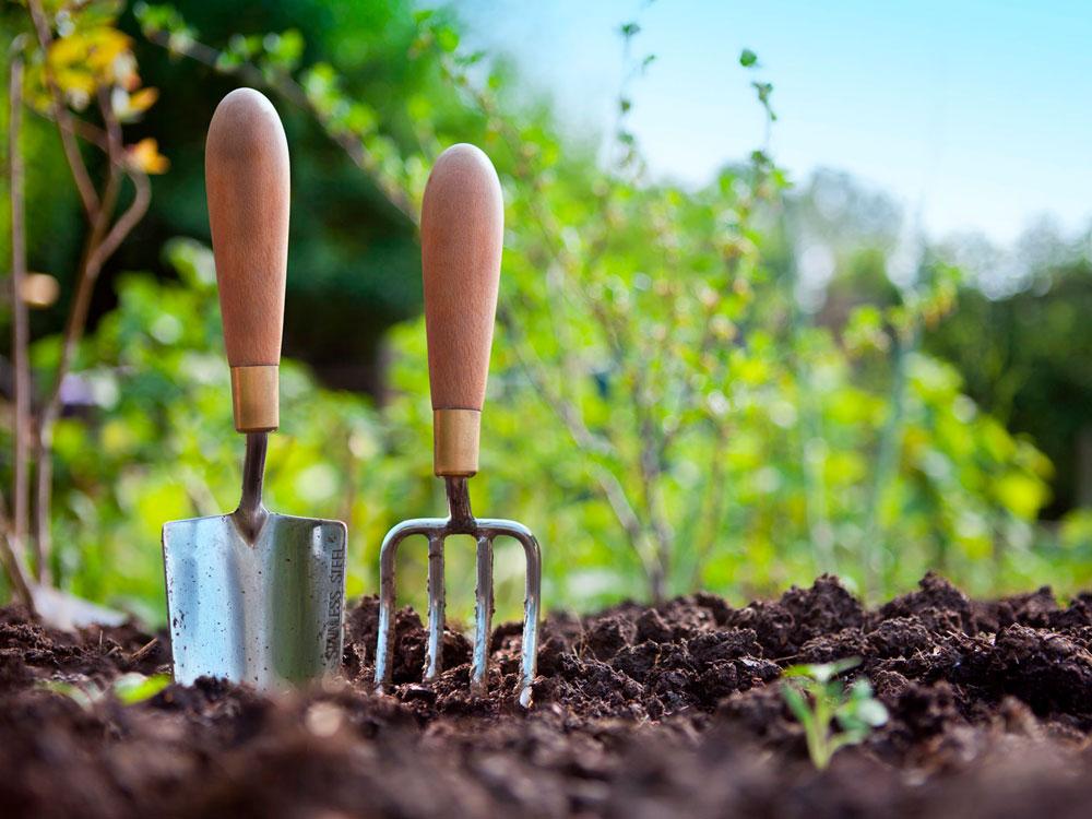 Trädgårdsverktyg i jord